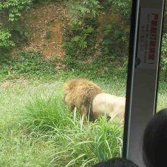 長沙生態動物園のユーザー投稿写真