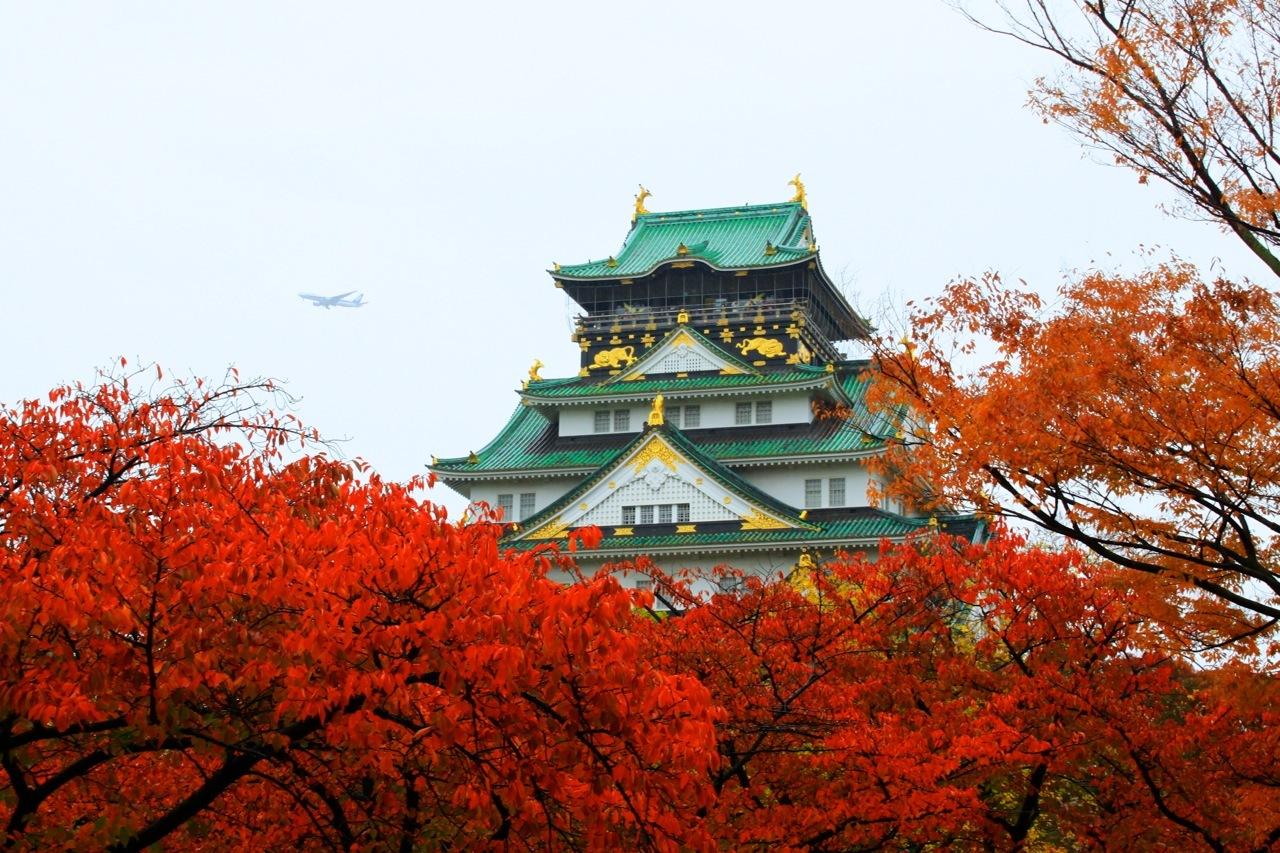 日本大阪_日本大阪+京都+奈良6日5晚半自助游·关西和歌山深度游&升级一晚五星