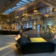 Natural History Museum of Los Angeles User Photo