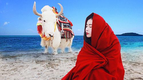 西藏拉萨+日喀则+布达拉宫+珠峰大本营7日6晚跟团游·游高原圣湖❤眺银河宿珠峰❤双飞爆款