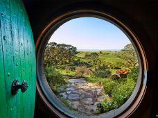 新西兰南岛+北岛5日4晚跟团游·北岛+南岛北部【罗托鲁瓦+惠灵顿+尼尔森+皮克顿+马尔堡】海鲜巡游,酒庄品酒,怀托摩萤火虫洞,霍比特人村,爱歌顿农场