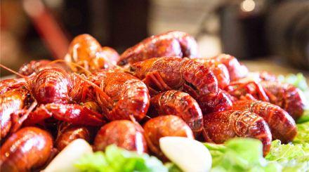 景酒-牛路野营杭州下午茶和烧烤