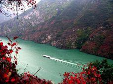 长江三峡3日2晚跟团游·含餐 0自费0购物 纯玩团 宜昌-重庆 单程!长江三峡+白帝城+巫山小三峡!