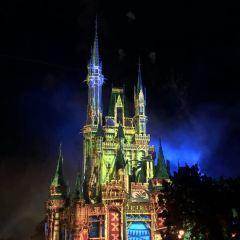 Walt Disney World User Photo