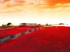 盘锦红海滩风景区+关门山景区2日1晚跟团游·盘锦红海滩风景廊道.本溪关门山品质纯玩2日游