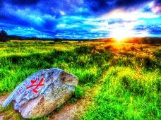 呼伦贝尔+海拉尔+漠河8日8晚跟团游·呼伦贝尔草原中国最北点漠河+寻北之旅+原始兴安岭+多项民俗体验+北极光专属之旅