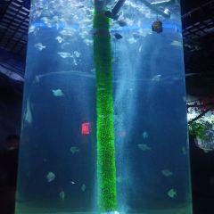Shijiazhuang Zoo Aquarium User Photo