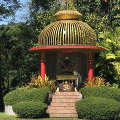 Phuket Bird Park User Photo