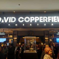 《大衛·科波菲爾魔術》秀用戶圖片