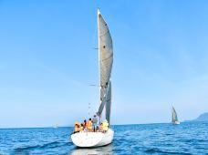 大连+旅顺口区+老虎滩海洋公园3日2晚跟团游·『大连&嗨玩一夏』天然氧吧棒棰岛,拾贝踏浪,秘境美食,观潜艇,瞰军港,听红色往事,体验帆船出海,约会海鸥,赠:浪漫滨城夜景游