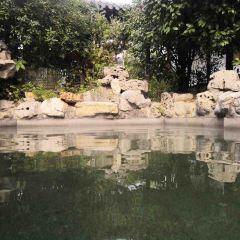 福如東海溫泉用戶圖片