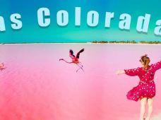 墨西哥坎昆6日5晚半自助游·精选坎昆周边一日游,经验丰富的中文导游带队,服务贴心,探秘玛雅文明和自然奇景+5大一日游+三大X乐园,八项自选行程,自由组合,专业玩转坎昆。