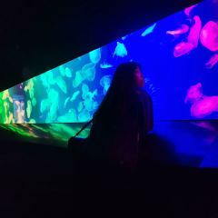 浩海立方海洋館用戶圖片