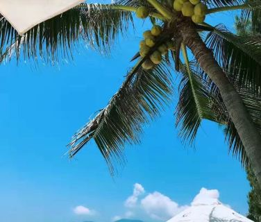 越南芽庄6日5晚半自助游·新升级【金秋特惠天堂湾+限量送卡】私人沙滩天堂湾,四钻酒店,多送