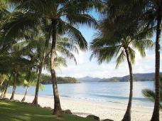 澳大利亚汉密尔顿岛4日3晚半自助游(4钻)·汉密尔顿岛+心形大堡礁+白天堂沙滩+舒适住宿+浪漫轻松之旅+汉密尔顿岛机场接送机