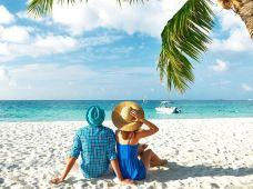 澳大利亚汉密尔顿岛4日3晚半自助游(4钻)·【大堡礁机场免费接送+惊喜4星级65平珊瑚景酒店园景房+天堂白沙滩游船浪漫出海】可升海景房 可4人间含早 可加订心形礁直升机