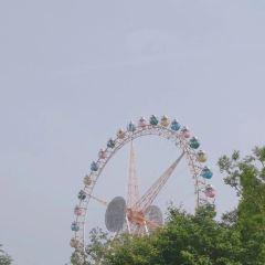 合肥萬達主題樂園用戶圖片