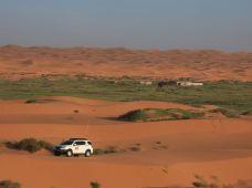 阿拉善左旗腾格里沙漠2日1晚跟团游·七湖连穿,深度解读腾格里