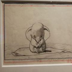 新加坡藝術科學博物館用戶圖片