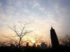 江苏句容茅山景区2日1晚半自助游·茅山+赤山湖湿地+季子文化园二日游