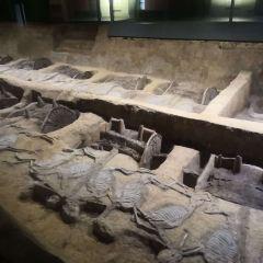 Chu Kings' Tombs (Xiongjia National Archaeological Site Park) User Photo