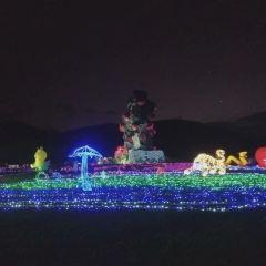 야룽만 장미계곡 여행 사진