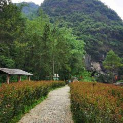 """The Fenglin (Rock Forest) Jiuchongtian (""""Ninth Heaven"""") Scenic Area User Photo"""