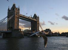 英国4日3晚跟团游·【一路向南】伦敦全天+爱丁堡+约克+牛津大学(爱丁堡进,伦敦出)