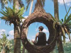 印度尼西亚巴厘岛6日半自助游·【丛林秋千】+『乌布四季酒店下午茶』+『拉古娜酒店自助晚餐』