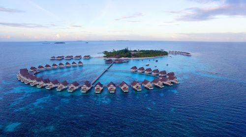 马尔代夫圣塔拉岛(中央格兰德)Centara Grand7日5晚自由行(5钻)·6-7月大促 4晚岛上1马累+1价全包+送5次出海