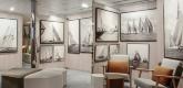 艺术画廊 Art Gallery/Photo Video area