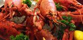 龙虾烧烤吧 lobster grill