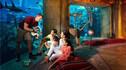 【亲子优选·寒假总动员】 迪拜阿布扎比7天5晚·畅游迪拜亲子四大主题乐园+与企鹅亲密互动+海豚湾+迪拜塔148层俯瞰+体验奢华酒店