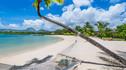 【美丽假期·至臻童趣】毛里求斯8天5晚·四季红树林别墅+皇家棕榈海景套房+包船追逐海豚+四季水疗+畅游毛里求斯之旅