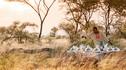 【四季专属·环球之旅】文化盛宴私人飞机环球24天23晚·环游世界+电影指导教学武士剑斗+俄国皇室礼遇+传统水灯节+非洲野奢Safari+专属乐团演出
