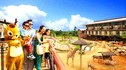 【亲子甄选·清境农场】台湾亲子乐园7天6晚·猫空缆车+清境农场绵羊秀+动物乐园世界+双套房入住享受