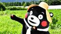 【童心游·拜访熊部长】日本九州+东京6天5晚·豪斯登堡亚洲最大玫瑰街+世界首家机器人酒店+熊部长办公室+五星美宿日式景观房+出海观海豚+创作式铁板料理+自在东京