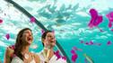 【海底餐厅·浪漫记忆】马尔代夫康莱德Conrad港丽岛度假村6天4晚·水下餐厅婚礼仪式+精彩美食畅享