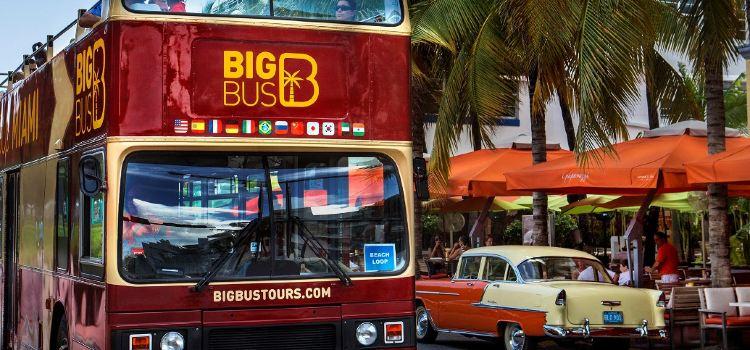 Big Bus Miami1