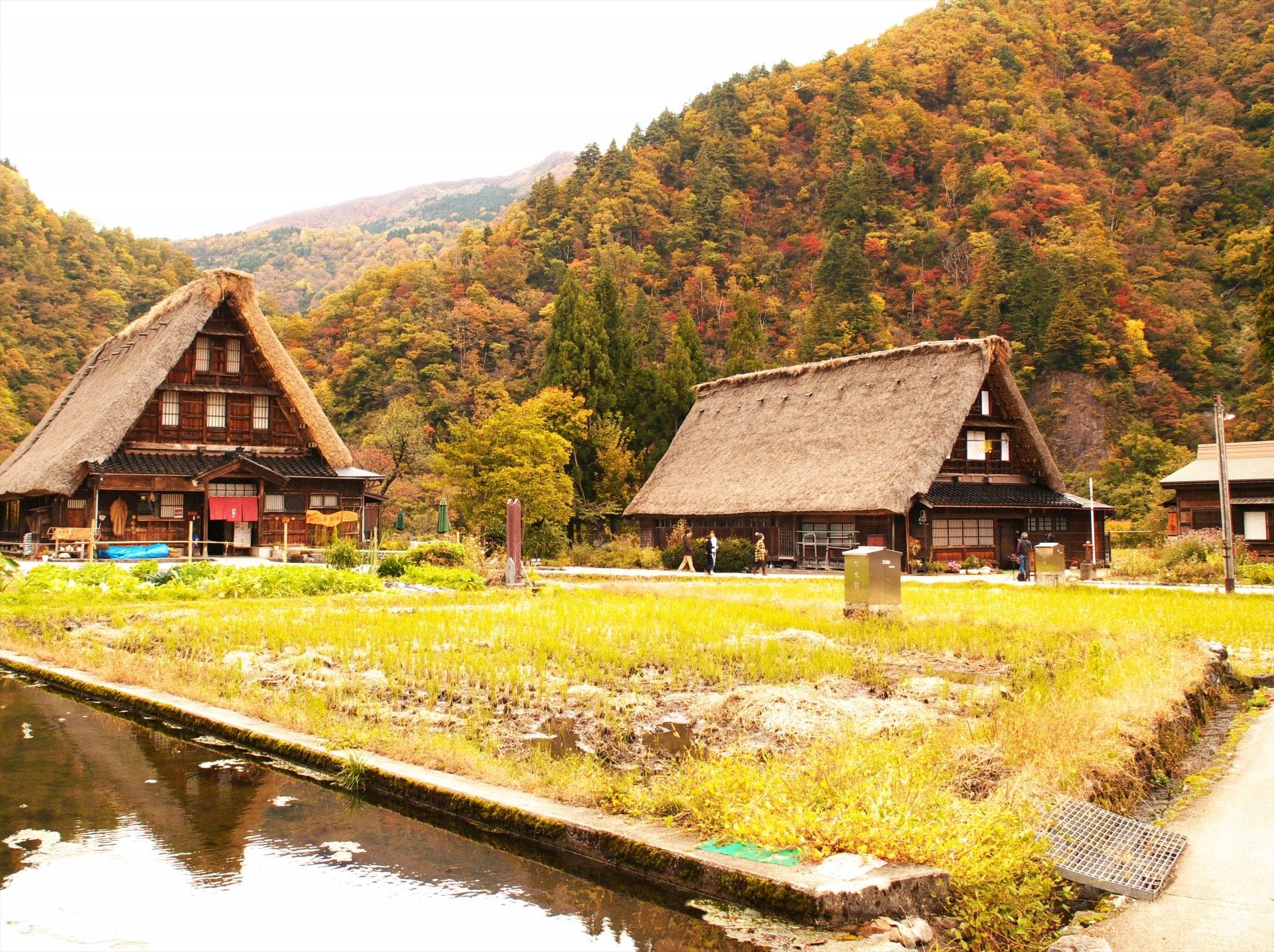 【名古屋巴士之旅】白川鄉合掌村、飛驒高山老街一日遊