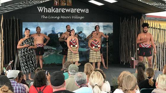 Deluxe small group Cruise Day Tour, Rotorua, Tauranga & Mt Maunganui highlights