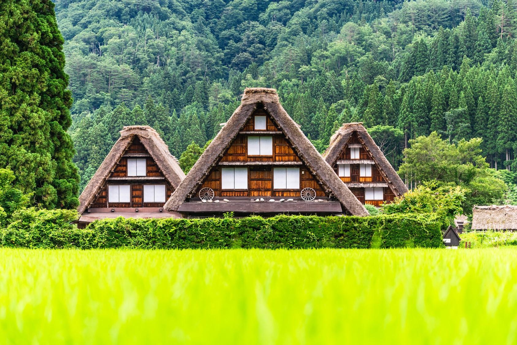 日本白川鄉合掌村+飛驒高山一日遊(第二件9折 當地特色美食)