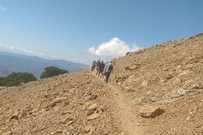 Troodos Walking Trip (Artemis+/Myllomeris Waterfalls) - private from Ayia Napa