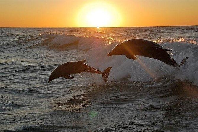 Private Sunset Cruise from Orange Beach