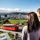 Wellington: 3-Hour City Sights and Coastline Tour