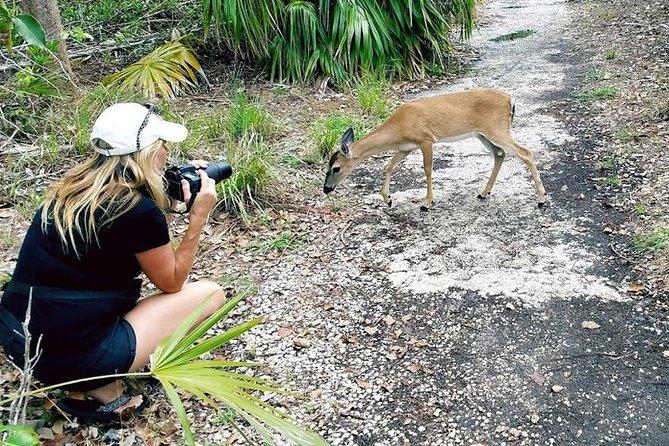 Full-Day Tour of Florida Keys Including Aquarium Encounters from Key West