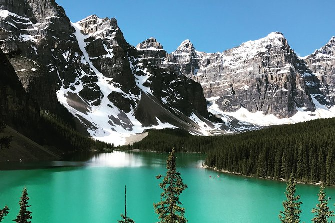 Private Tour for 1 to 5 guests of Lake Louise and the Icefield Parkway