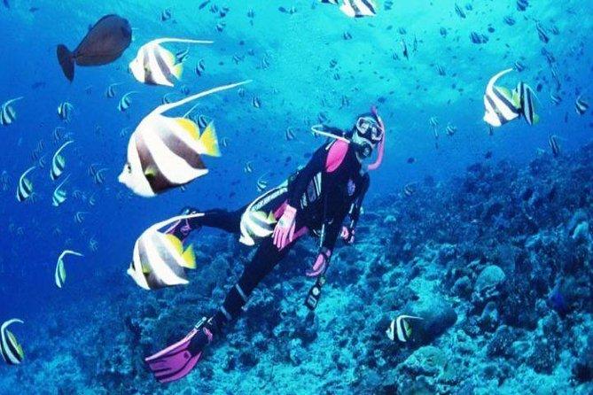Nha Trang : Adventure with Beautiful Mun Island & Top Activites Diving Tour