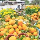 Private Full-Day Mekong Delta Tour by Speedboat