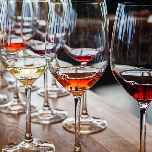 Rhône Wine in Depth